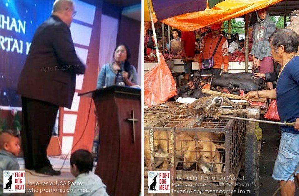 インドネシア誰が犬肉を‼❓