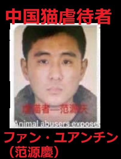 【署名】中国:残虐‼2か月で猫80匹虐殺!サイコがは媚びる国で