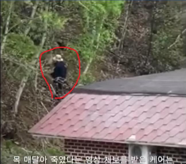 韓国:犬の首吊る虐待魔