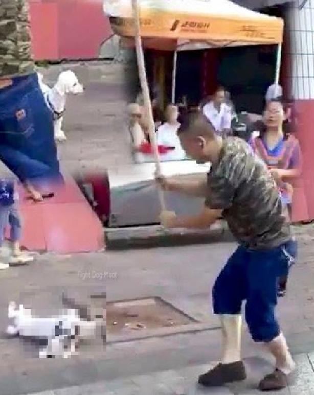 中国:中共ウイルス 国民を脅かす!