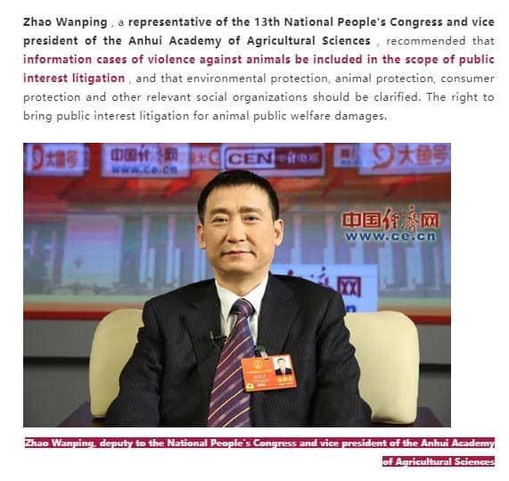 中国:動物虐待事件だらけの中、NPC委員は法的処罰を提案‼
