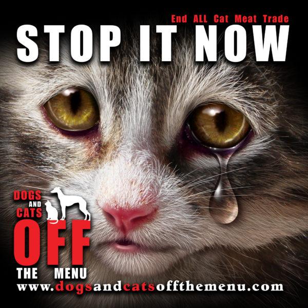 ベトナム:猫の骨まで商売に‼