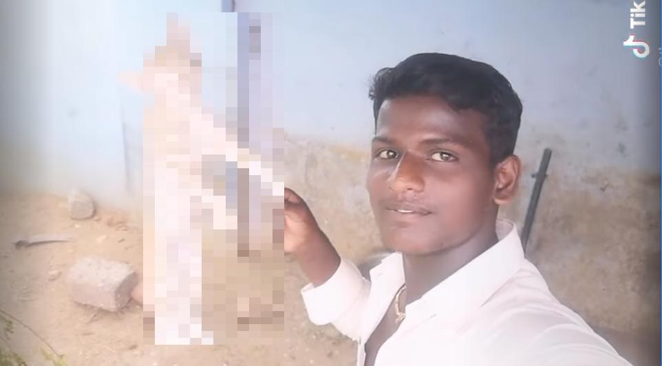 インド:牛愛護の国は猫に残酷!「いいね」の為に猫は首を吊られ殺される‼