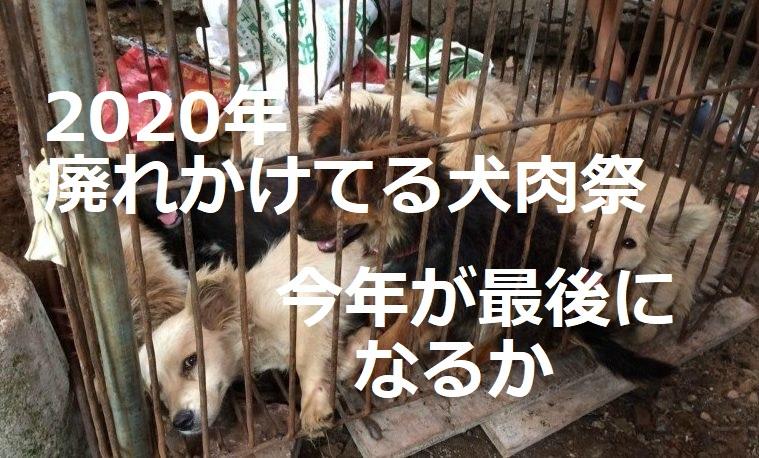 2020年ユーリン犬肉祭開催!実態はすでに廃れていた!