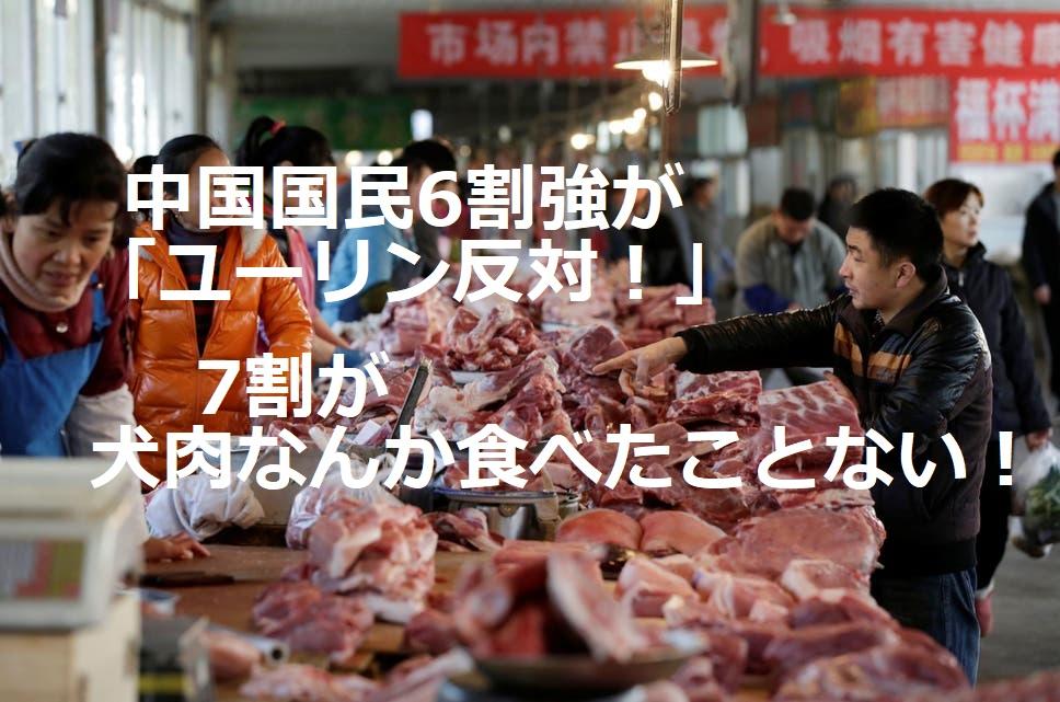 中国:犬猫食文化 多くの国民が反対!