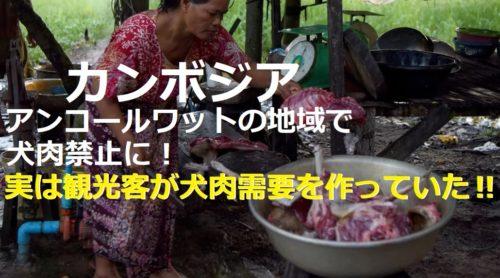 カンボジア初!犬肉禁止の州が誕生:実は観光客が犬肉需要を増やしていた‼
