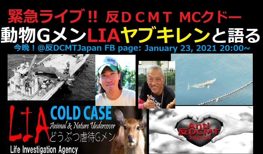 HOPE, Taiji's Another Victim : An Inverview with Ren Yabuki of LIA, on January 24, 2021